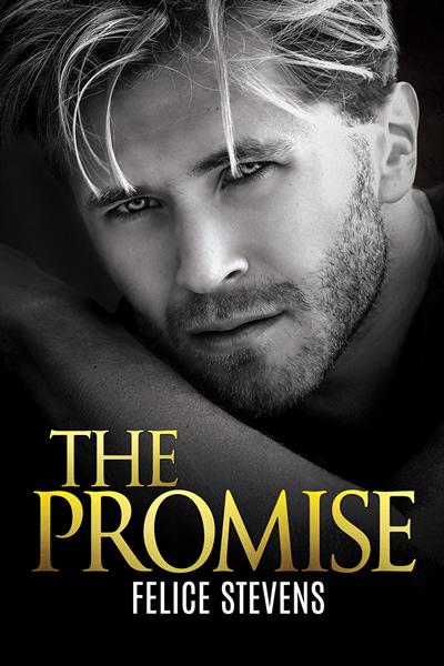 The Promise by Felice Stevens